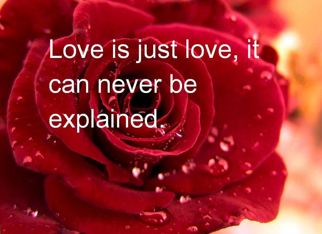 Top 45 Happy Valentines Day 2017 Greeting Cards Quotes – Valentine Day Greetings Cards