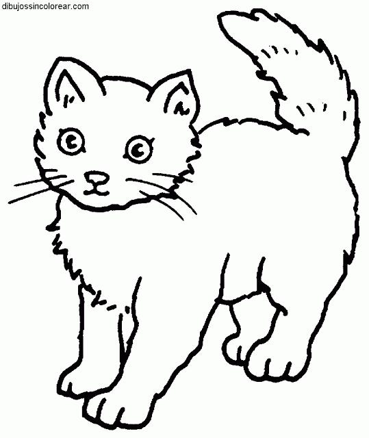 Siluetas gatos para colorear - Imagui