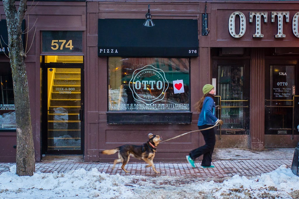 February 14 2015 Valentine's Day bandit in Portland, Maine USA photo by Corey Templeton