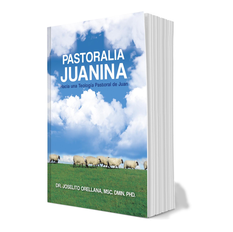 Mi nuevo libro: PASTORALIA JUANINA, Hacia un Teología Pastoral de Juan, 355pp