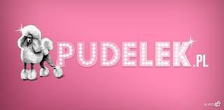 http://www.pudelek.pl/