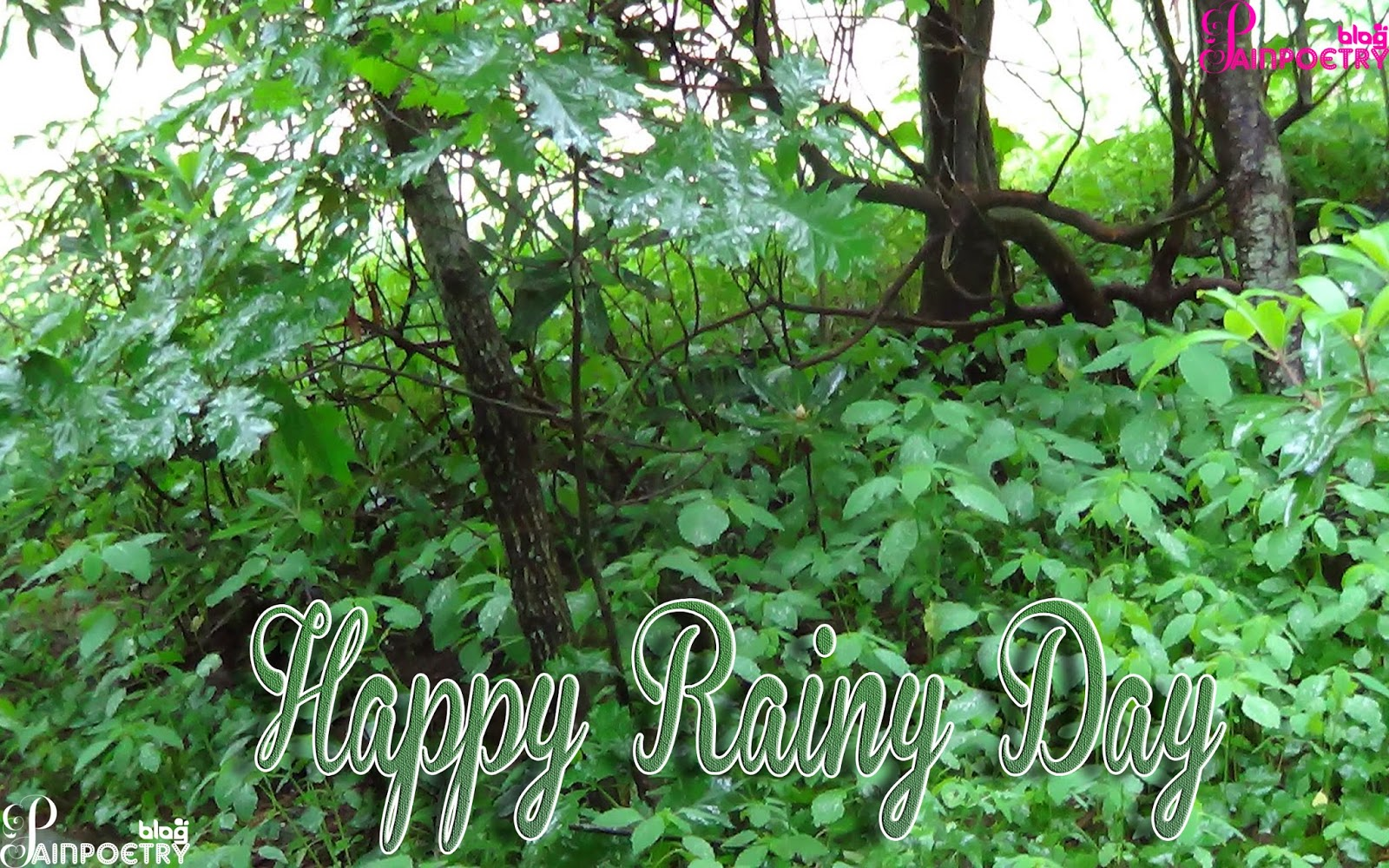 Happy-Rainy-Day-Happy-Mosam-Day-Image-Wallpaper-Wide