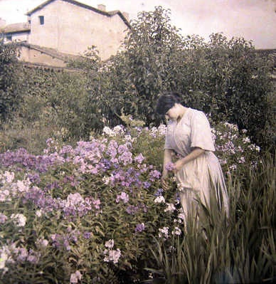 Edwardian Autochrome Photo #antique #photo #autochrome #edwardian