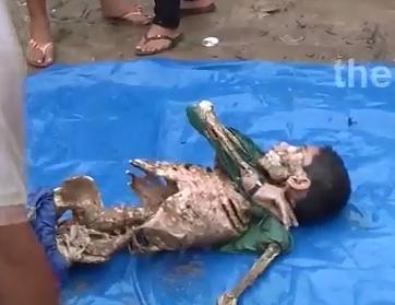 Se lo Comieron las Pirañas