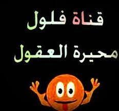 """الراقصة سما المصري تطلق قناة """"فلول"""" لمواجهة """"رابعة"""""""