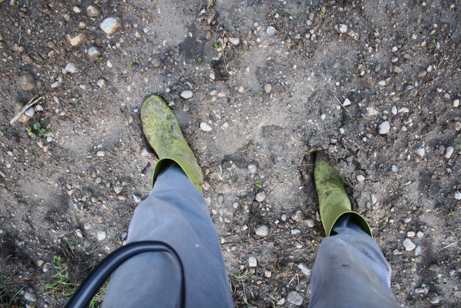 Losmogotes sorpresa for Piano terra di 380 piedi quadrati