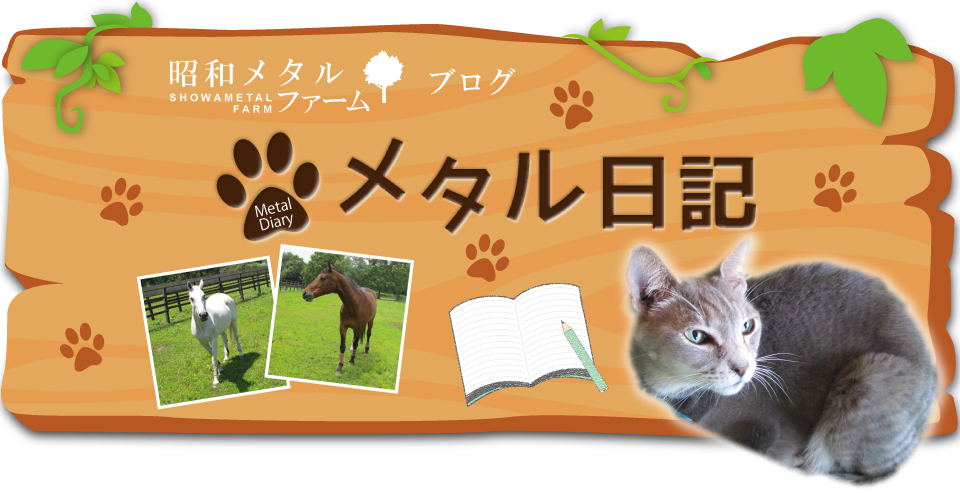 昭和メタルファームブログ メタル日記