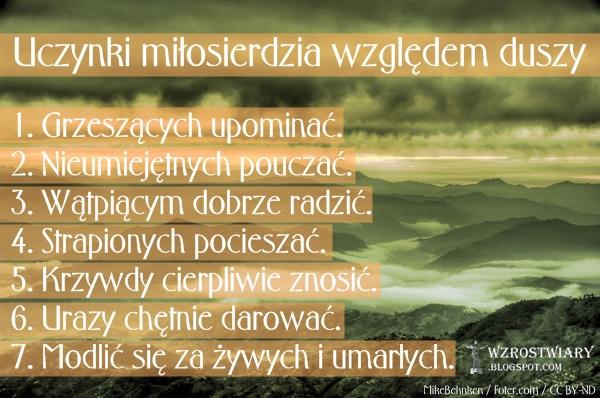 Wzrost Wiary | wzrastajmy w wierze: Uczynki miłosierdzia względem duszy