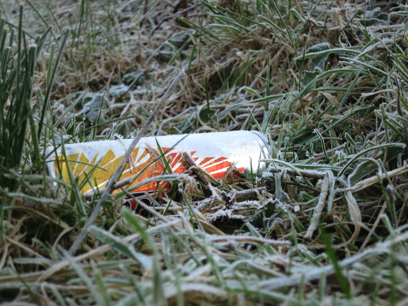 White, orange and yellow frosted drinks can lying in frosted grass.