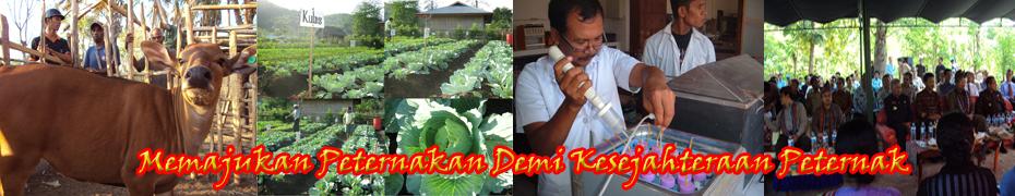 Pusat Penelitian dan Pengembangan Sapi Timor Undana