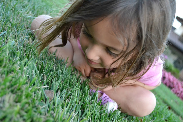 girl watching snail in grass