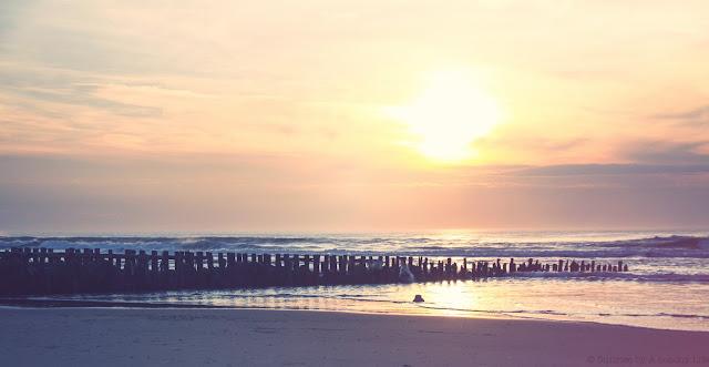 sunset,hossegor
