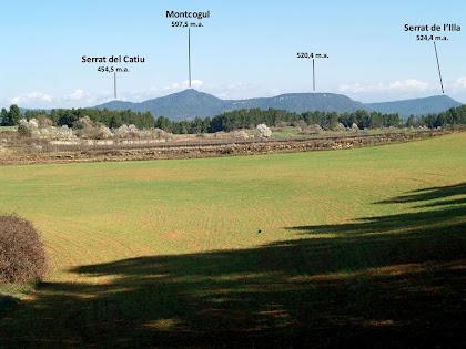 Els camps del Pla de Can Vila amb el Montcogul al fons