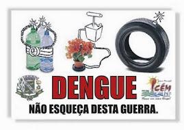 Na luta contra a Dengue