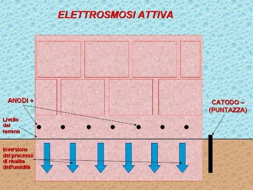 Muffa e umidit in casa elettrosmosi attiva passiva ed - Muffa e umidita in casa ...