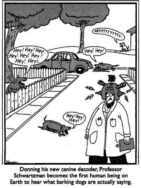 professor schwarzman gary larson far side