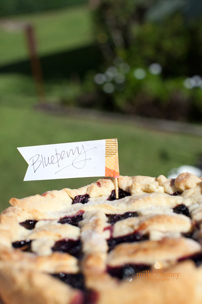 Blueberry pie birthday party