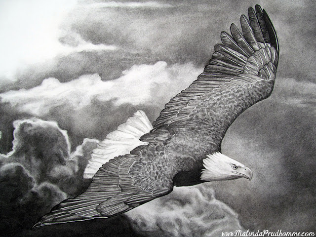 charcoal drawing, charcoal artist, eagle soaring, eagle art, commissioned artwork, custom art