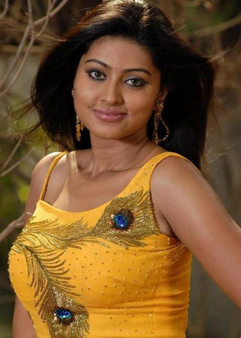 Actresses Sneha Hot Photos