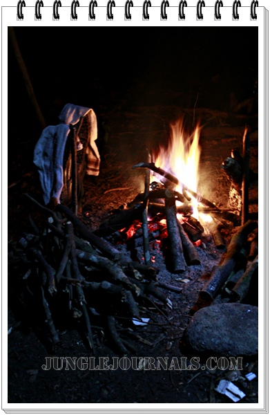 Monsoon Jungle Camping Log ~ The Night Campfire