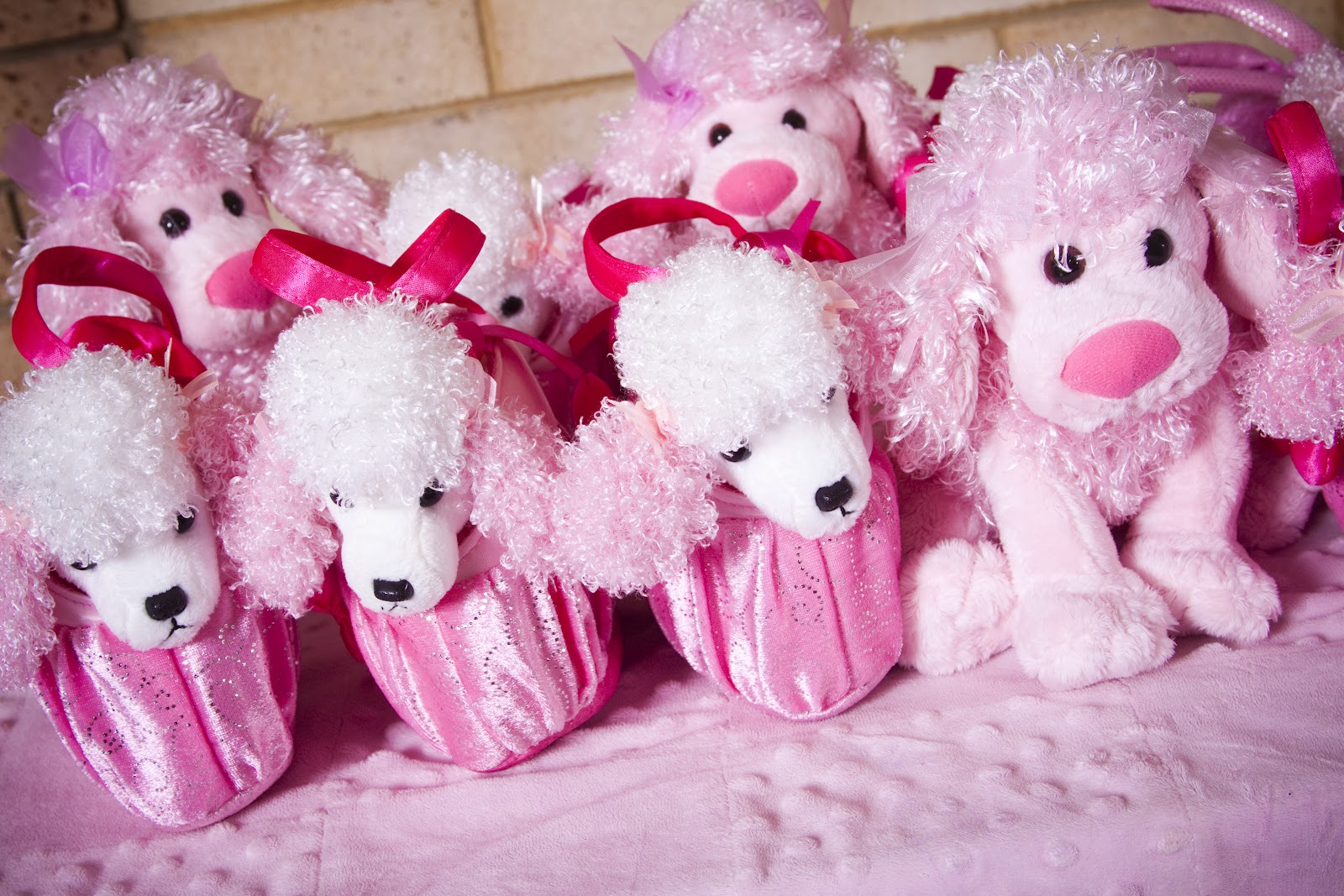 Ashlee Rae Designs Ashlee S Pink Poodle Party