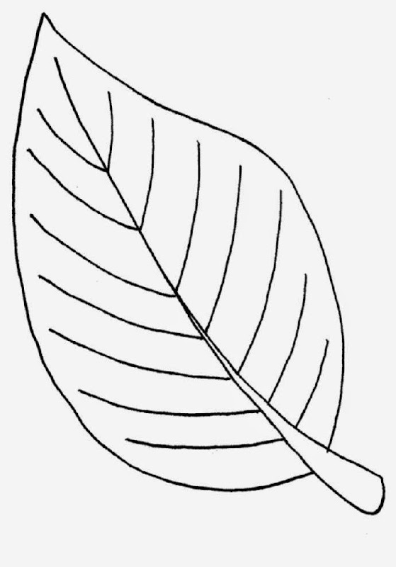 free palm leaves coloring pages - photo#1