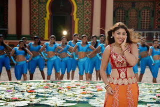 Richa Gangopadhyay Latest  Pictures in Bhai Telugu Movie    ~ Bollywood and South Indian Cinema Actress Exclusive Picture Galleries