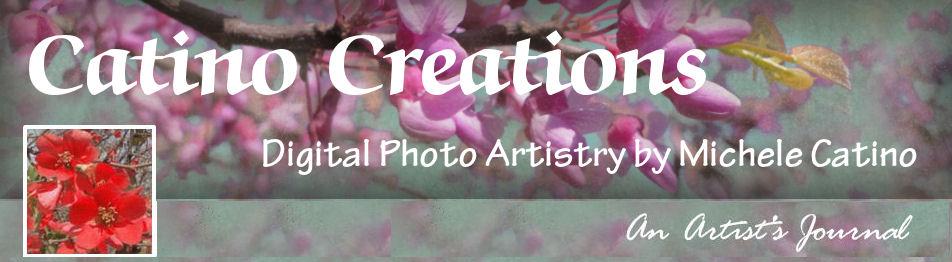 Catino Creations