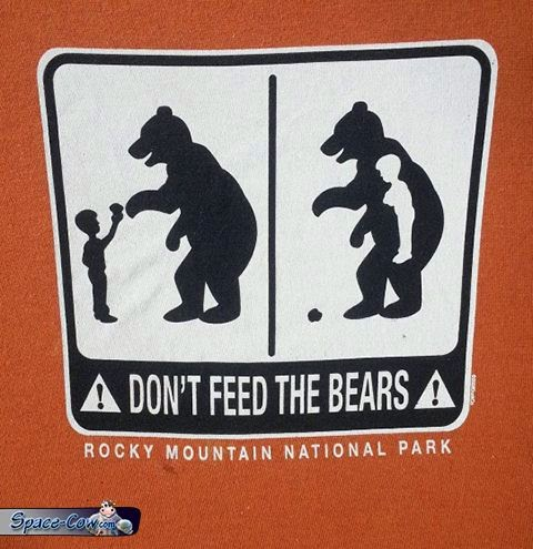 funny bear sign picture