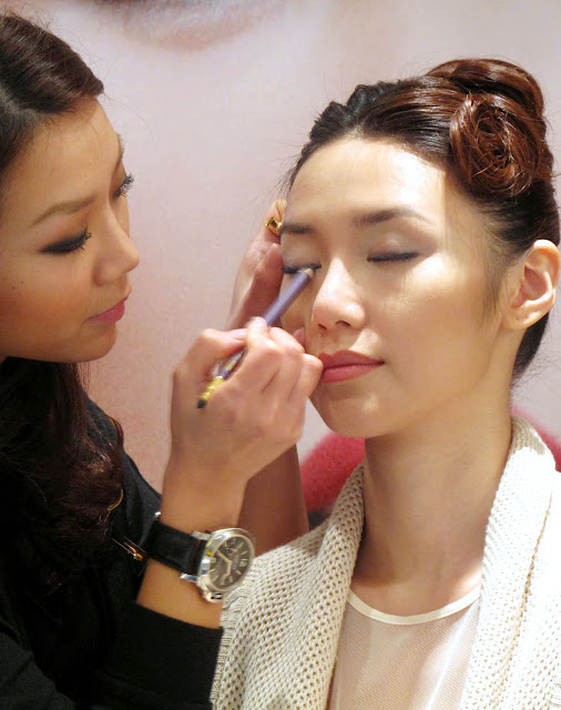 estee lauder makeup 2011春妝 眼影 唇彩 唇膏 紫色 啡色