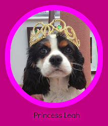 Princess Leah