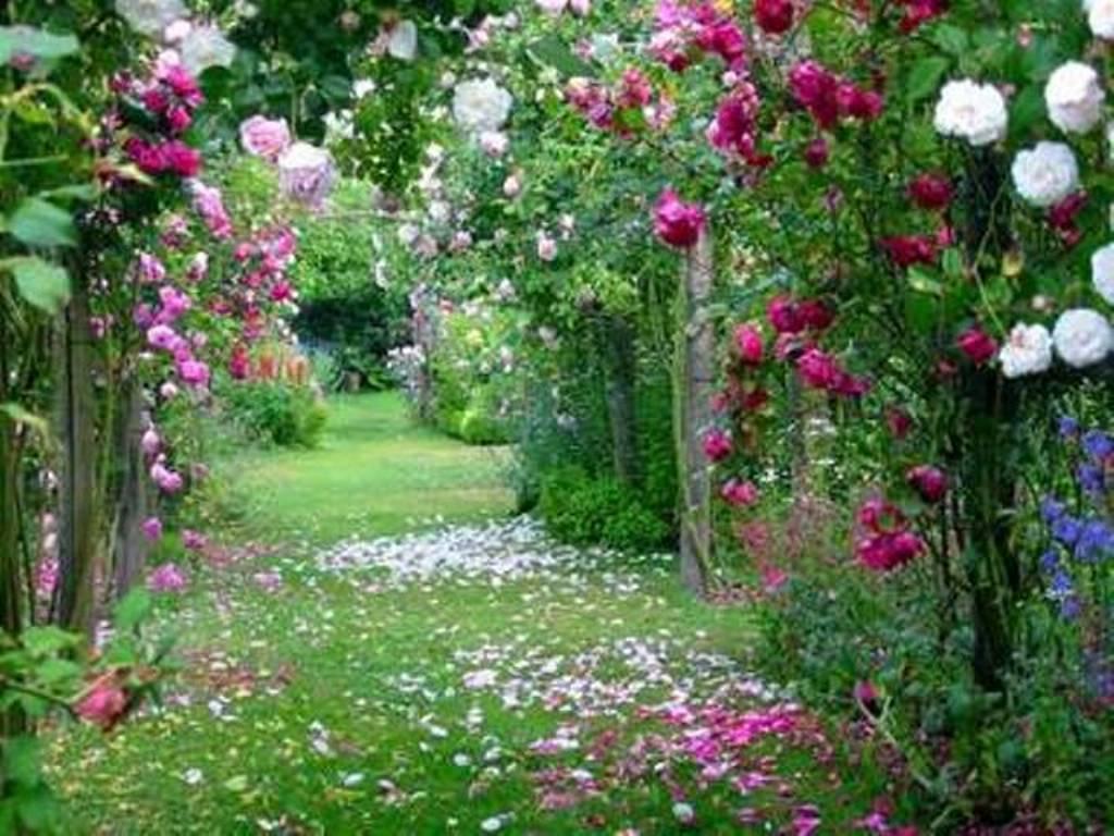 Jardin de flores y poesias - Jardines con rosas ...