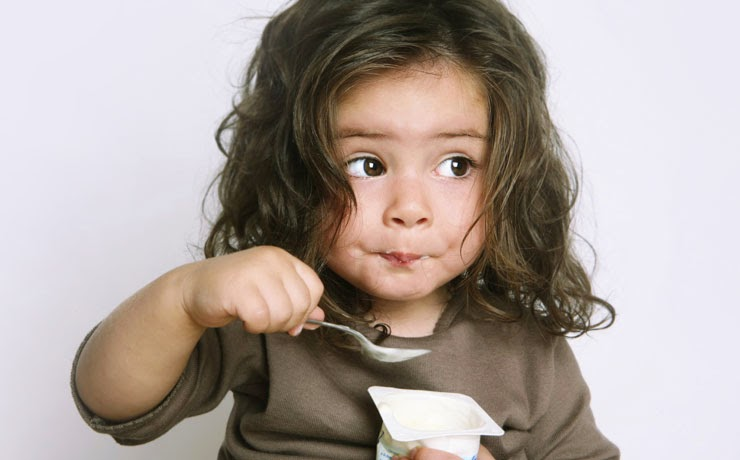 Cachorro pode comer iogurte?