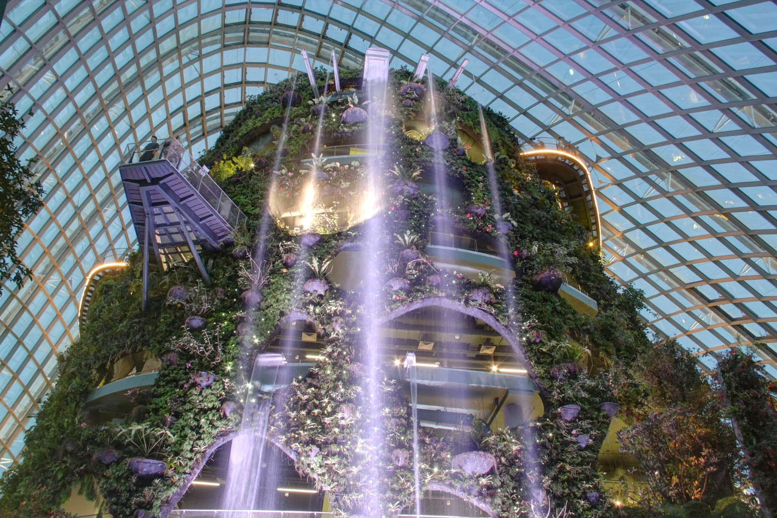 Have You Visited The Cloud Forest At Gardens By The Bay