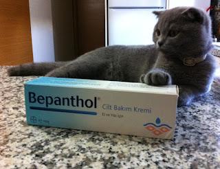 Bepanthol cilt bakım kremi