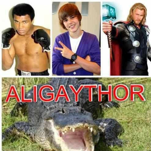 Justin Bieber Jokes on Muhammad Ali   Justine Bieber   Thor   Aligaythor