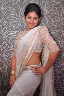 Anjali latest Glamorous pics in saree 035