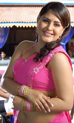 Farzana Hot Navel Show in Rose Saree Photos