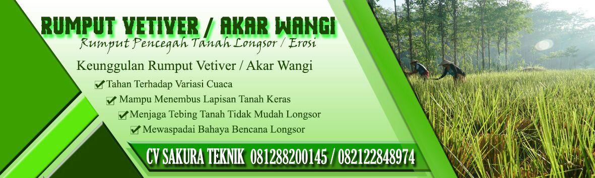 JUAL RUMPUT VETIVER / AKAR WANGI, 500/Bibit 7.500/Kg Harga Proyek Seluruh Indonesia