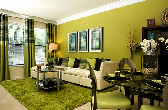 Living Room Color Green