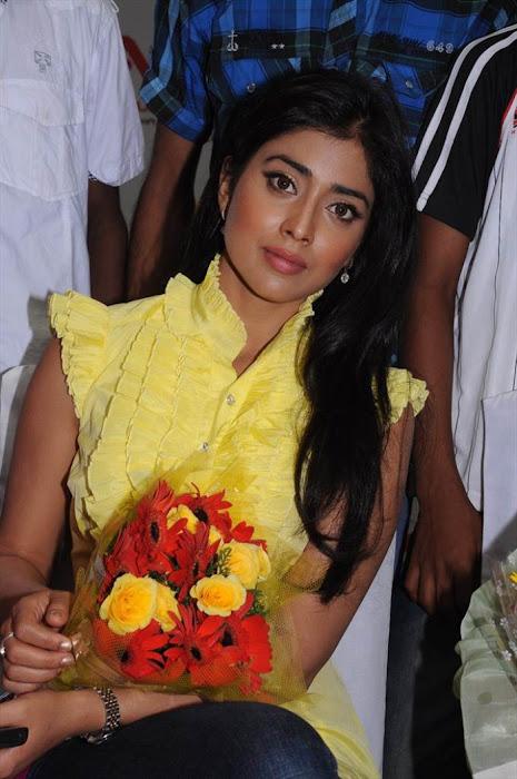 shriya saran at ccl promotional event cute stills