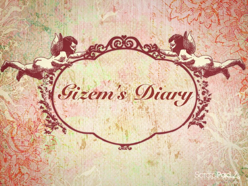 gizem's diary