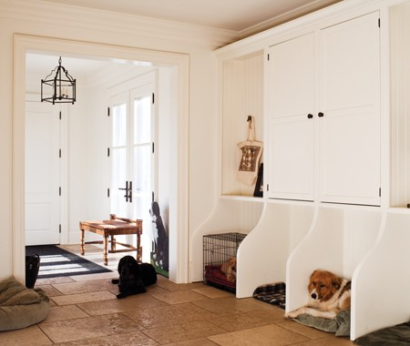 I love that these designs incorporate your dog into your house and your life