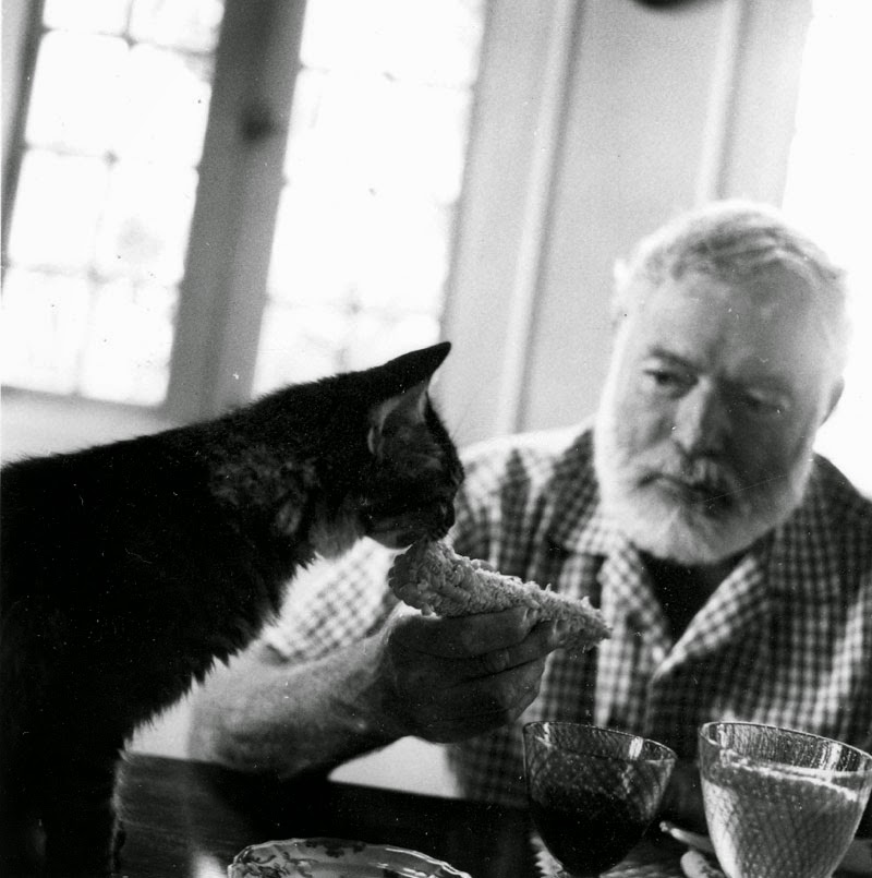 Retratos de 11 escritores célebres con sus gatos