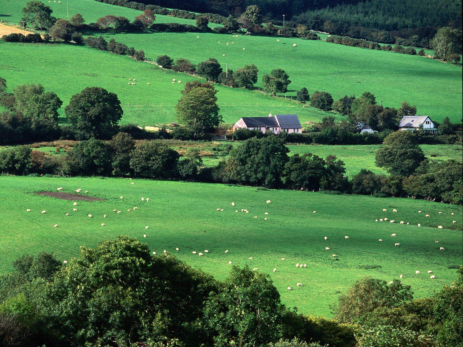 http://3.bp.blogspot.com/-xkGmW9hTNDU/TlTD238DVtI/AAAAAAAABRo/qTSBaFl8-p8/s1600/Fields+and+Farmhouses+of+County+Cork%252C+Ireland.jpg