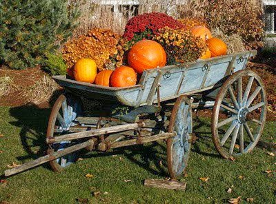 Autumn wagon with pumpkins