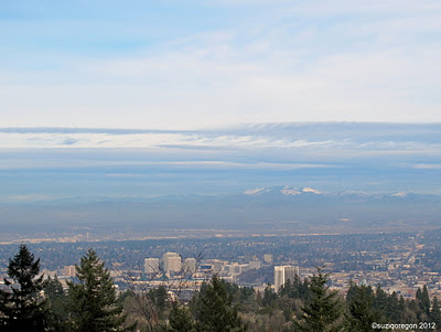 Portland from Council Crest