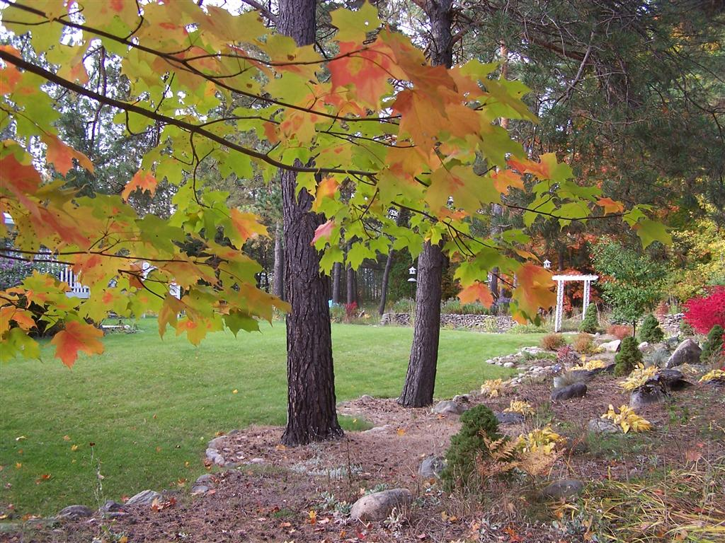 Perennial Passion: Rockwall Fall Color from Opposite Direction