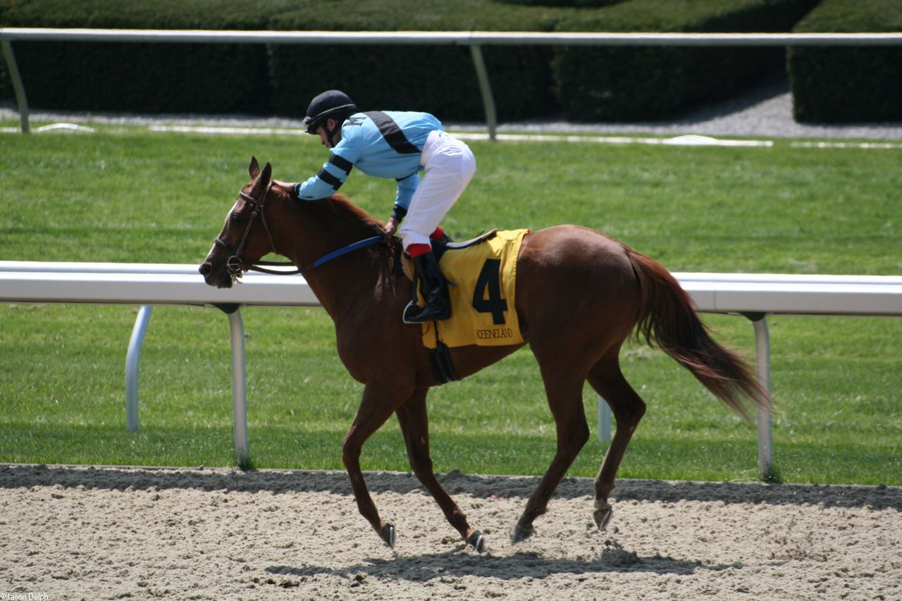 Horse Racing Pictures Images amp Photos  Photobucket