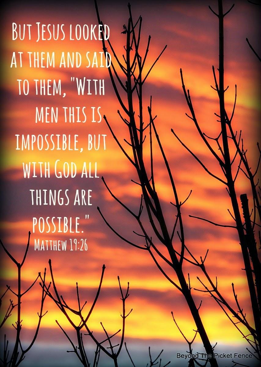 God's Word, Bible verse http://bec4-beyondthepicketfence.blogspot.com/2015/01/sunday-verses_11.html